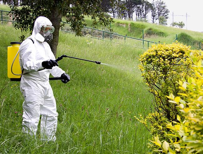 epis frente a productos fitosanitarios proin pinilla