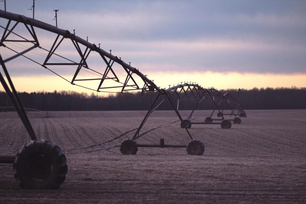 guante agricultura