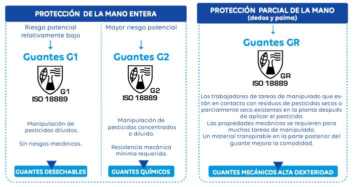 clasificación guantes g2
